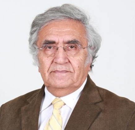 Prof. Dr. Ahmet Fahri ÖZOK